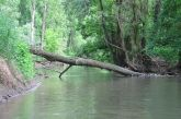 20100515_seichtwasser_rafting_16