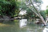 20120815seichtwasserrafting11